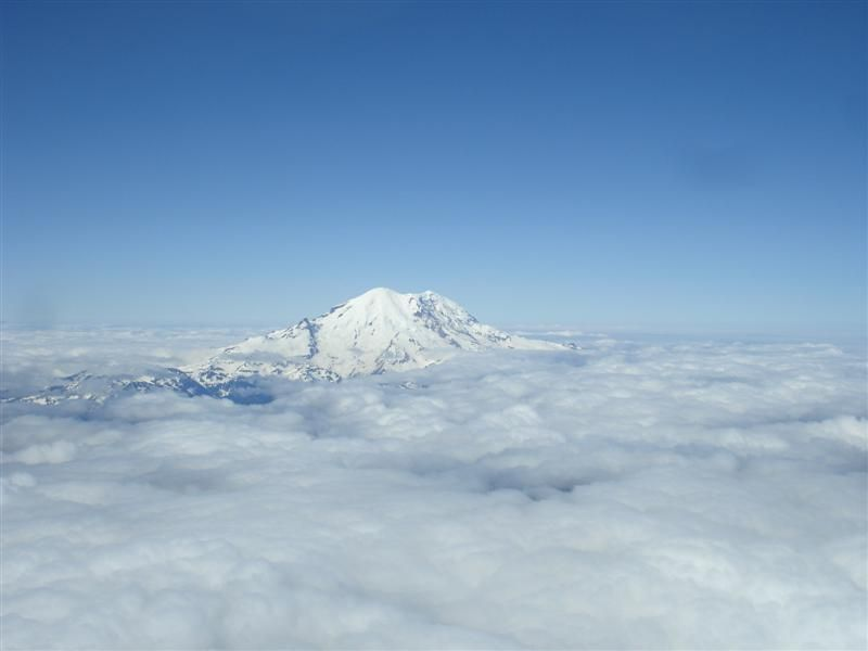 Mnt Rainier (10) (Medium).jpg
