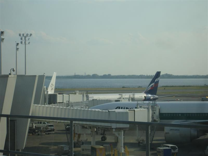 AFL JFK Term 1 (Medium).jpg
