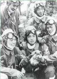 kamikaze2.jpg