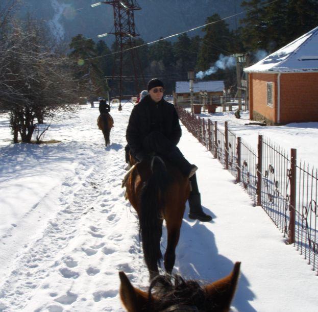 abrek_horse.JPG