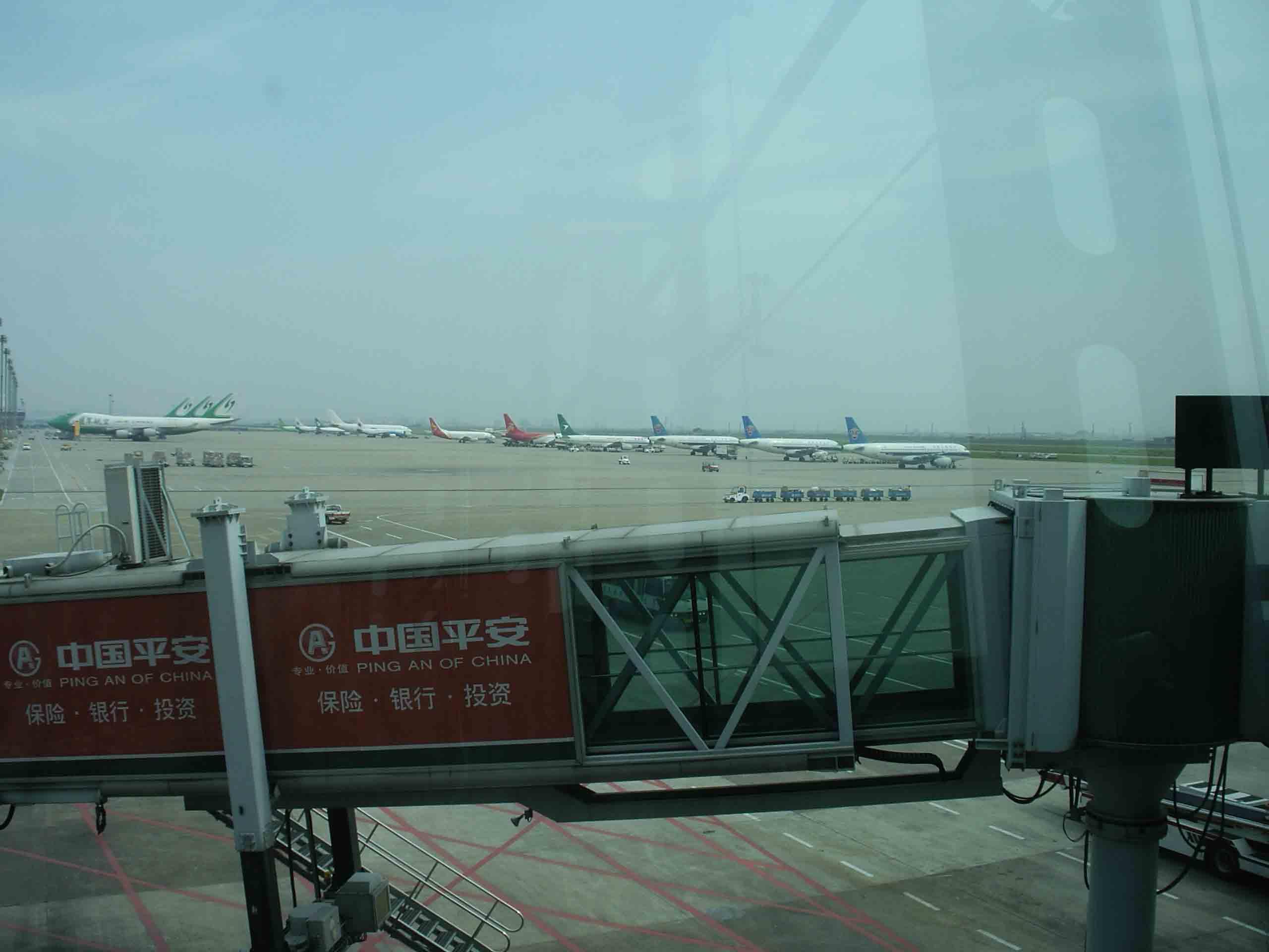 SHX-Shenzhen-(14).jpg