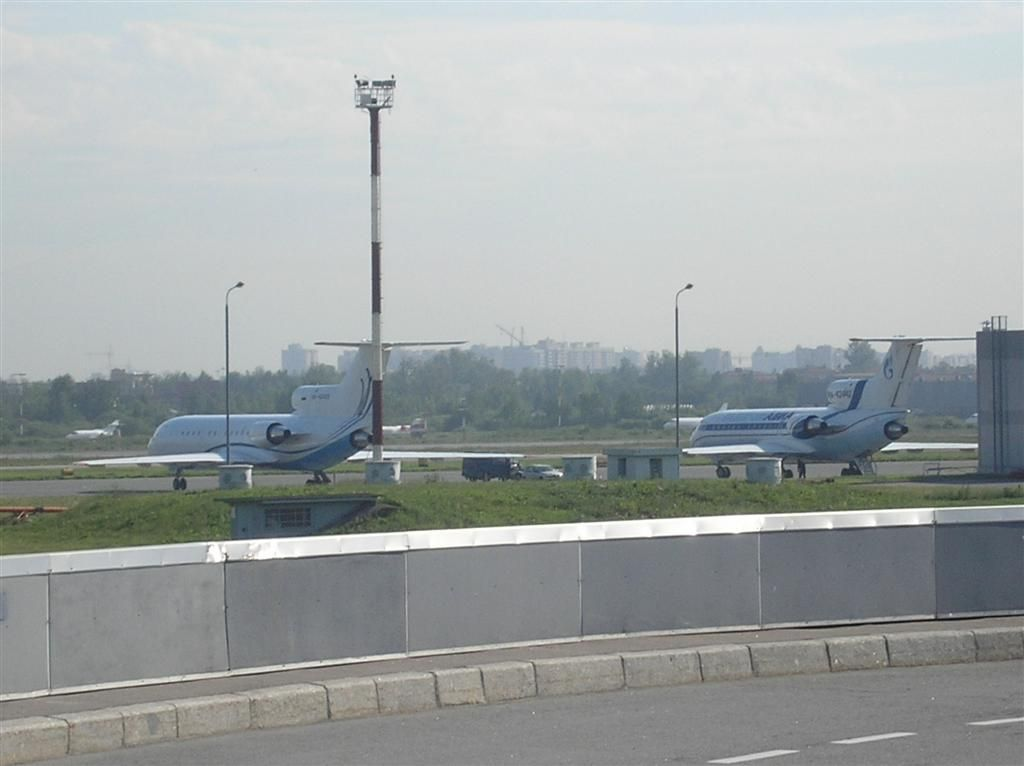 P7040019 (Large).JPG