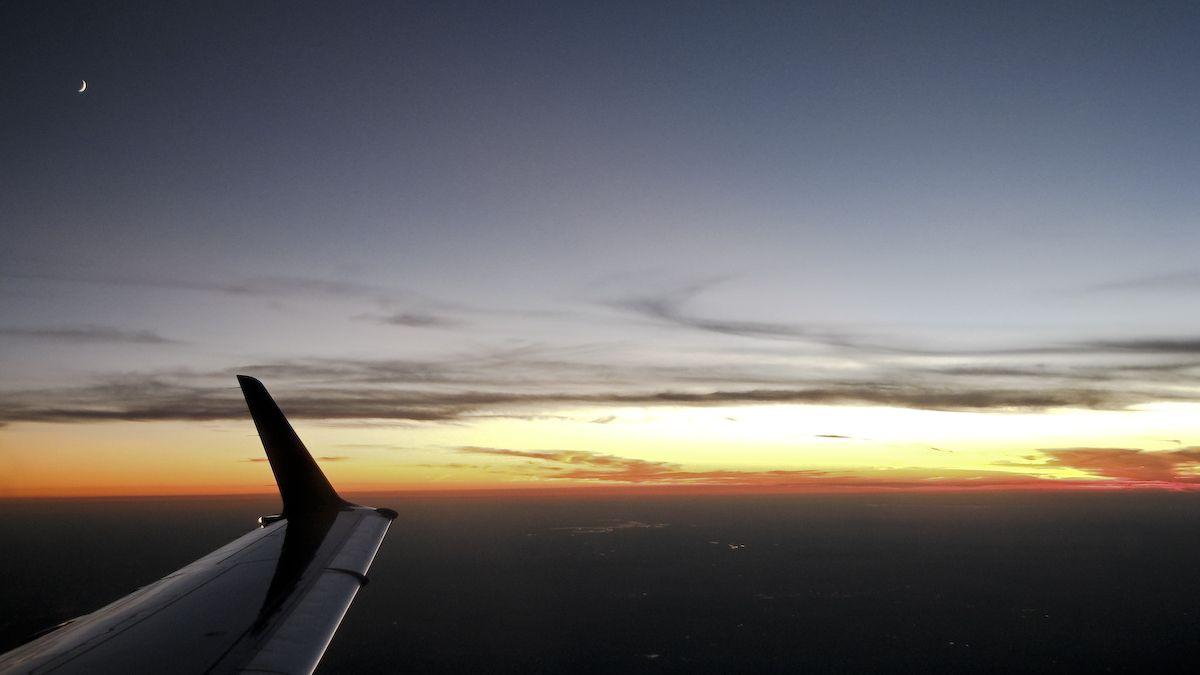 wings-0368.jpg