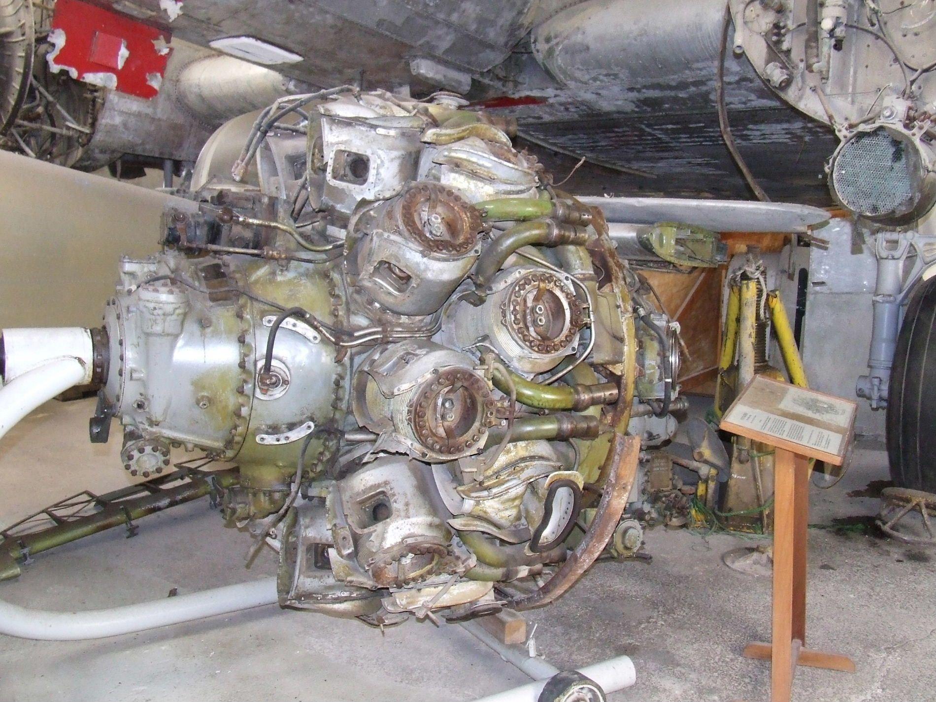 DSCF7351kl.JPG