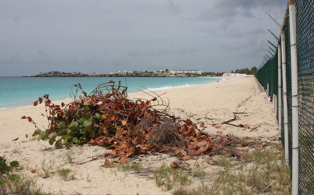 SXM-z-turtle-beach.jpg