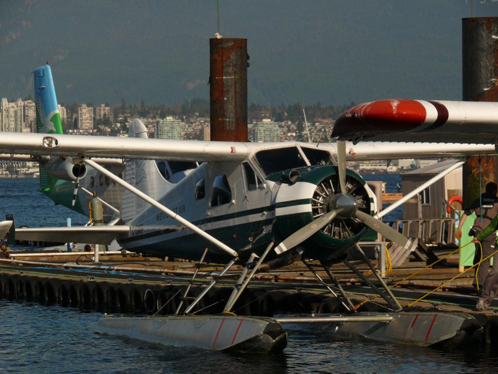 De Havilland Canada DHC-2 Beaver Mk1 green.jpg