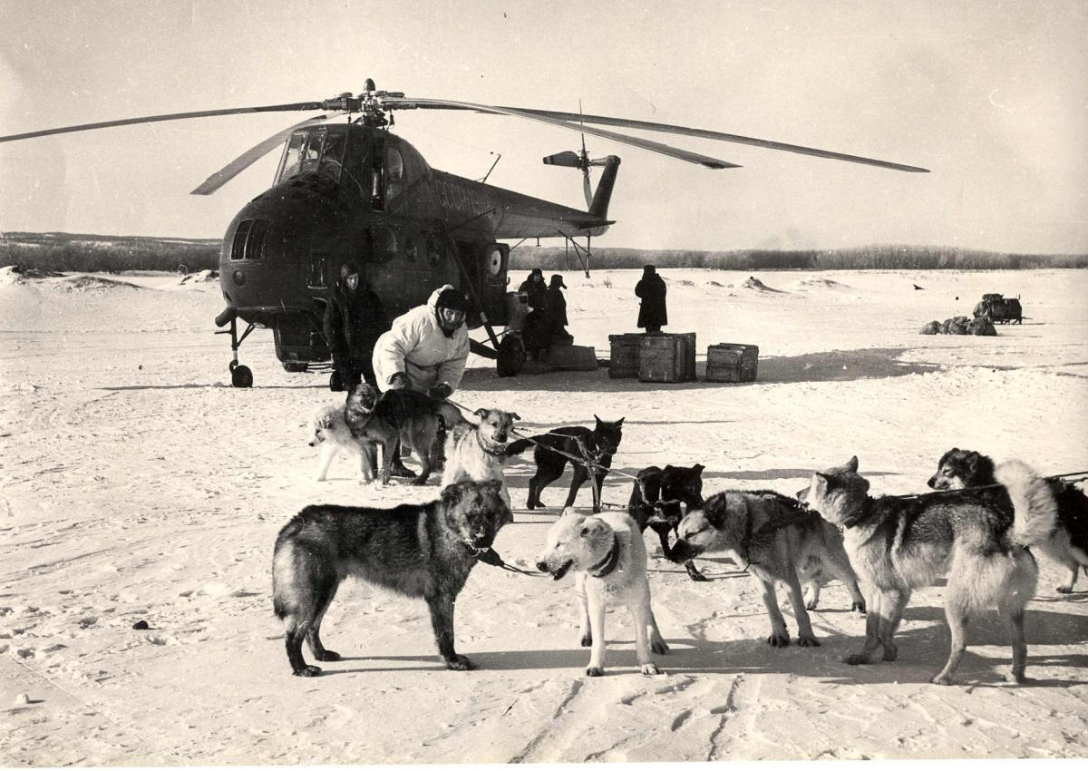 Музей , Ми-4, собачья упряжка, аэр. Тигиль 1970г..jpg