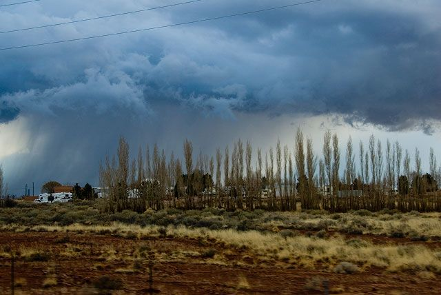 arizona_rain_021407.jpg