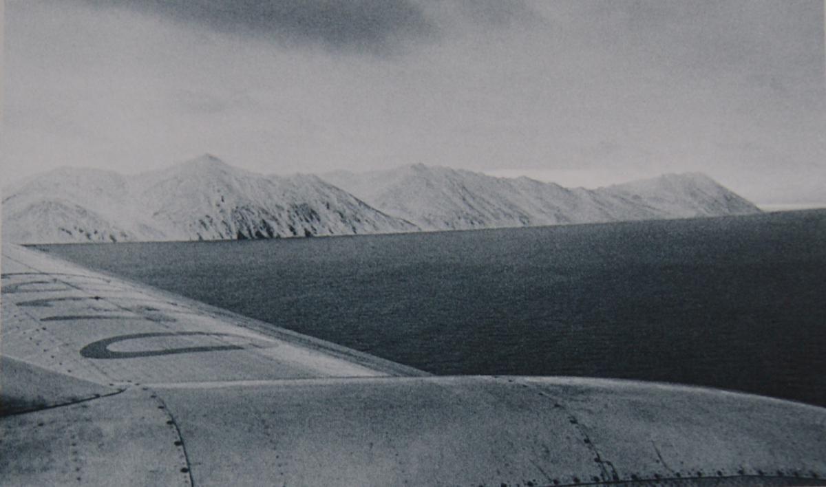 Polar 2.jpg